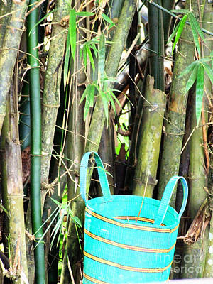 Photograph - Blue Bamboo by Isabelle Mbore