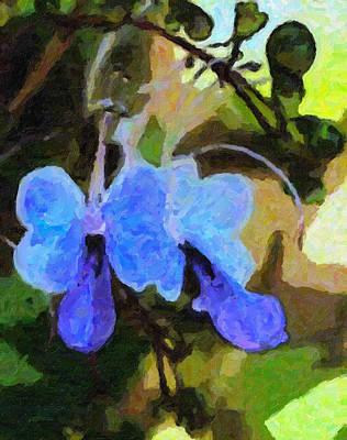 Photograph - Blue by Carol Kinkead