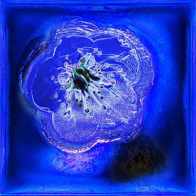 Blue Cherry Blossom Original by Li   van Saathoff