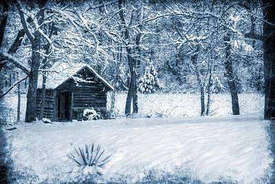 Photograph - Blue Christmas by Christine Annas