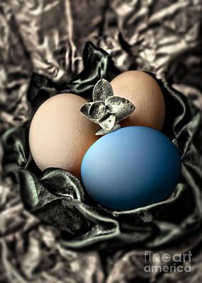 Photograph - Blue Classy Easter Egg by Danuta Bennett