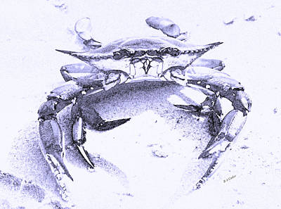 Shore Digital Art - Blue Crab  by Betsy Knapp