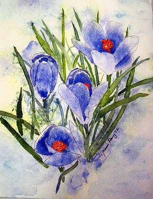 Blue Crocus In The Snow Art Print by Joann Perry