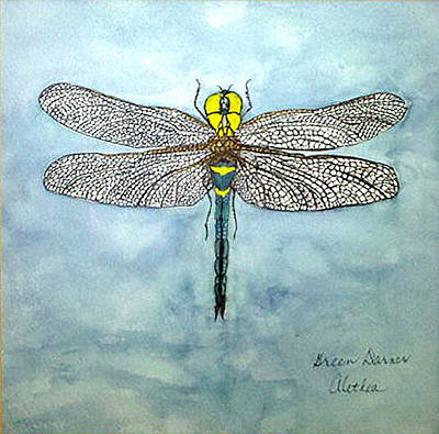 Art Print featuring the painting Blue Darner by Alethea McKee