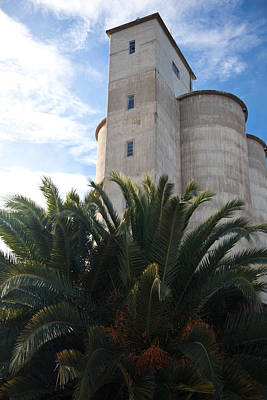 Photograph - Blue Day Silo 2 by Carole Hinding