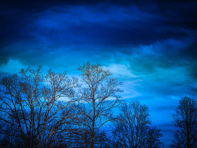 Photograph - Blue Delight by Victoria Ashley