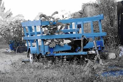Photograph - Blue Farm Wagon by Lynda Dawson-Youngclaus