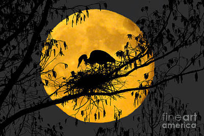 Art Print featuring the photograph Blue Heron On Roost by Dan Friend