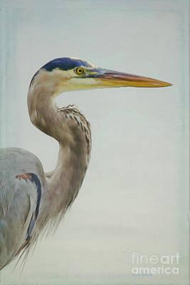 Heron Mixed Media - Blue Heron On Soft Texture by Deborah Benoit