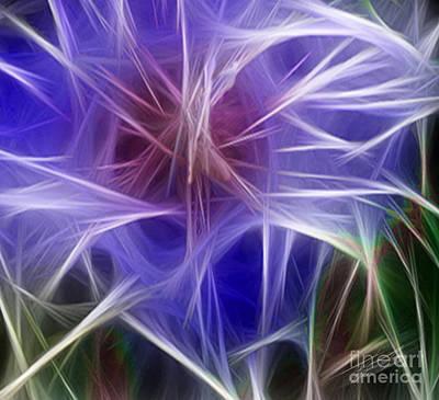Blue Hibiscus Fractal Panel 5 Art Print by Peter Piatt