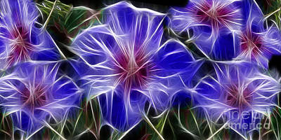 Digital Art - Blue Hibiscus Fractal by Peter Piatt