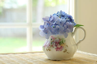 Y120831 Photograph - Blue Hydrangeas In Antique Floral Pitcher by Judy Davidson
