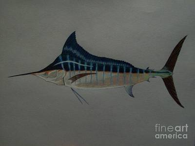 Blue Marlin Drawing - Blue by Jared Hester