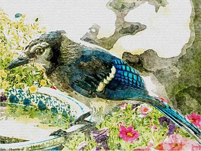 Blue Jay Art Print by Debbie Portwood