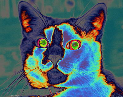 Digital Art - Blue Kitty by Larry Beat