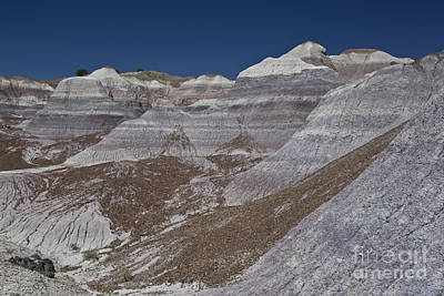 Photograph - Blue Mesa Canyon by Royce  Gideon