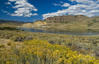 Photograph - Blue Mesa Reservoir - H by Tim Mulina