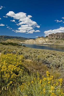 Spot Of Tea - Blue Mesa Reservoir - V by Tim Mulina