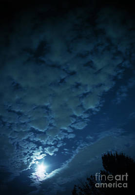 Photograph - Blue Moon by Eddie Lee