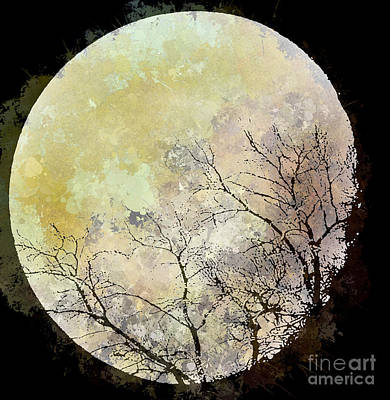 Blue Moon Rising Art Print by Arne Hansen