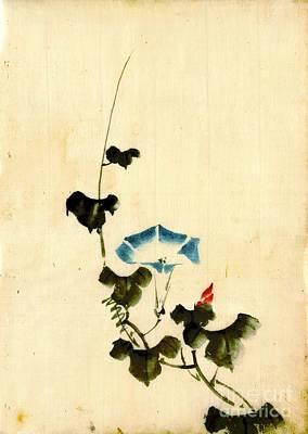 Blue Morning Glory Vine 1840 Art Print