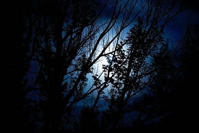Blue Night Art Print by Kevin Bone