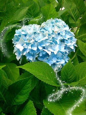 Blue Pom Flower Art Print by Lee Yang