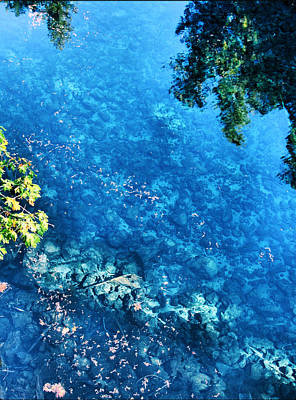 Photograph - Blue Pool I Mckenzie River Oregon by Lora Fisher