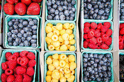 Photograph - Blue Red Yellow Berries by Dina Calvarese