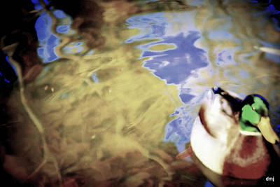 Photograph - Blue Reflections by Diane montana Jansson