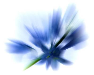 Blue Art Print by Sharon Lisa Clarke