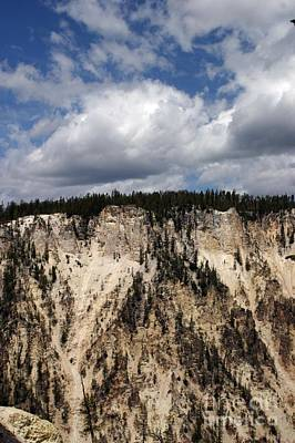 Photograph - Blue Skies And Grand Canyon In Yellowstone by Living Color Photography Lorraine Lynch