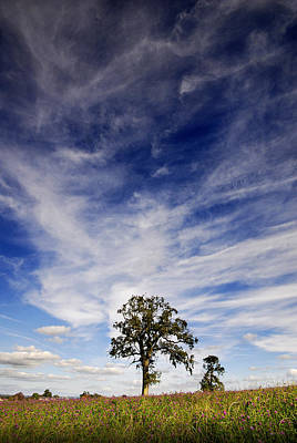 Art Print featuring the photograph Blue Skies Smiling At Me  by John Chivers