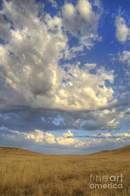 Photograph - Blue Sky And Golden Hills by Jim And Emily Bush
