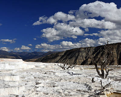 Photograph - Blue Sky And White Clouds Over Mammoth Hot Springs Geothermal Landscape  by Schwartz Nature Images