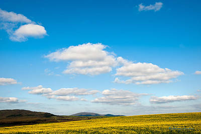 Blue Sky With Clouds Art Print