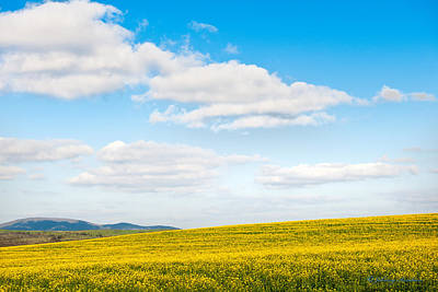 Blue Sky With White Clouds Art Print