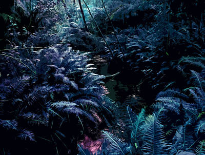 Blue Tropical Surreal Forest Original by Phill Petrovic