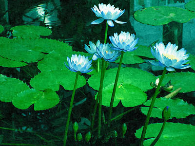 Blue Water Lily Art Print by Design Windmill