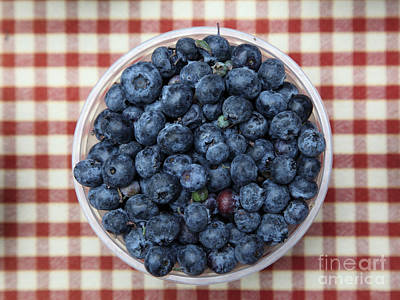 Photograph - Blueberries - 5d17825 by Wingsdomain Art and Photography