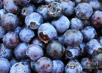 Guns Arms And Weapons - Blueberries by Carol Groenen