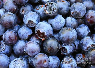Photograph - Blueberries by Carol Groenen