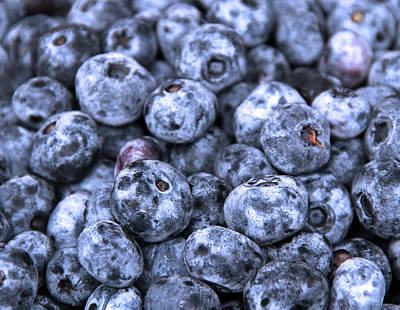 Blueberries  Art Print by Kim French
