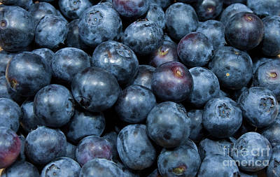 Art Print featuring the photograph Blueberries by Michael Waters