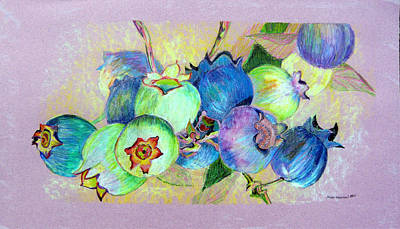 Blueberry Drawing - Blueberries by Mindy Newman