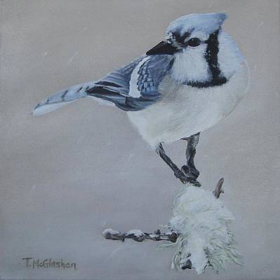 Bluejay In Winter Art Print by Traci McGlashan