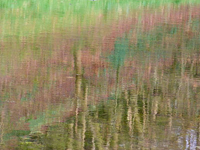 Photograph - Blushing Lake Reflection by Debra Collins