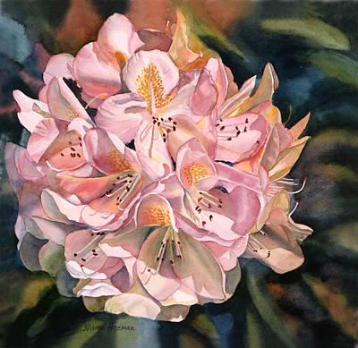 Blushing Pink Rhododendron  Print by Sharon Freeman