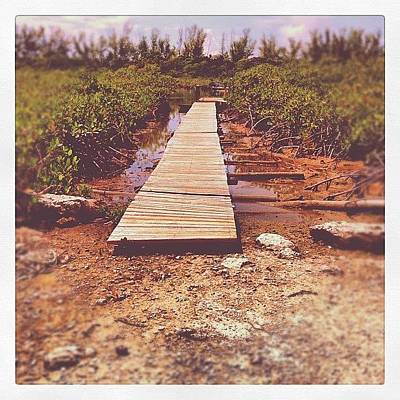 Pathway Photograph - Boardwalk by Gilberto Bernal