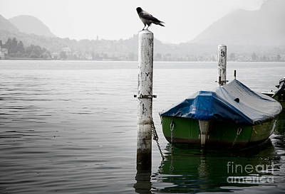 Boat And A Bird Art Print by Mats Silvan